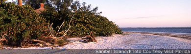 Frommers: A World of Travel Experience: Sanibel Island