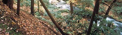 Frommers: A World of Travel Experience: Delaware Water Gap, Pennsylvania