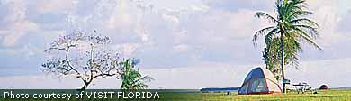 Check out the cheap fares to Florida!