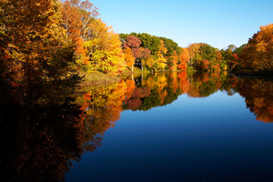 colorful leaves reflecting over a flat blue lake