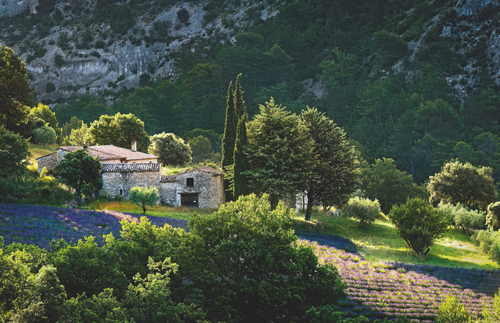 "From ""Provence Glory"" (Assouline): Farmhouse near Gordes, France"