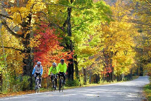 Go Sojourn Bike Tours has multiple leaf-peeping routes through Vermont. Courtesy Go Sojourn Bike Tours