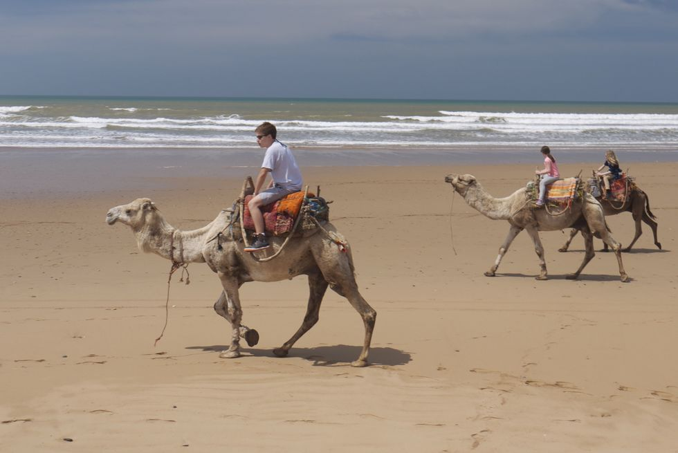 Camel rides are a thriving tourist business in Morocco