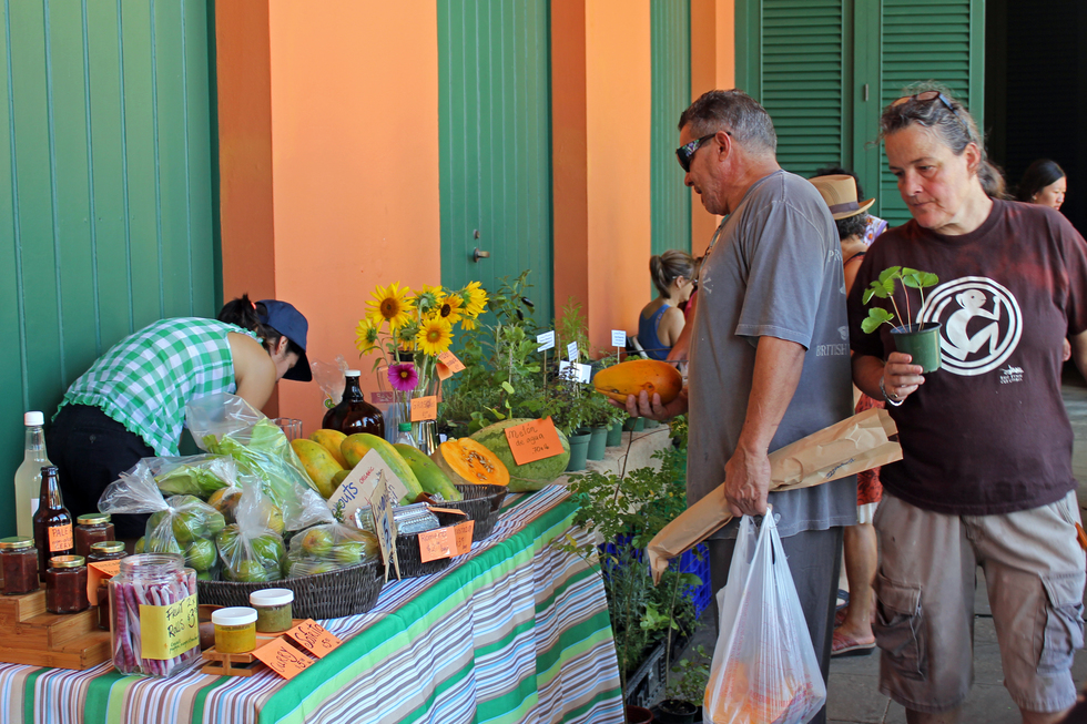 Tourists and locals stop by the market to get some organic local produce at an affordable price.