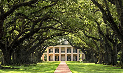 Louisiana's Most Glorious Antebellum Mansions