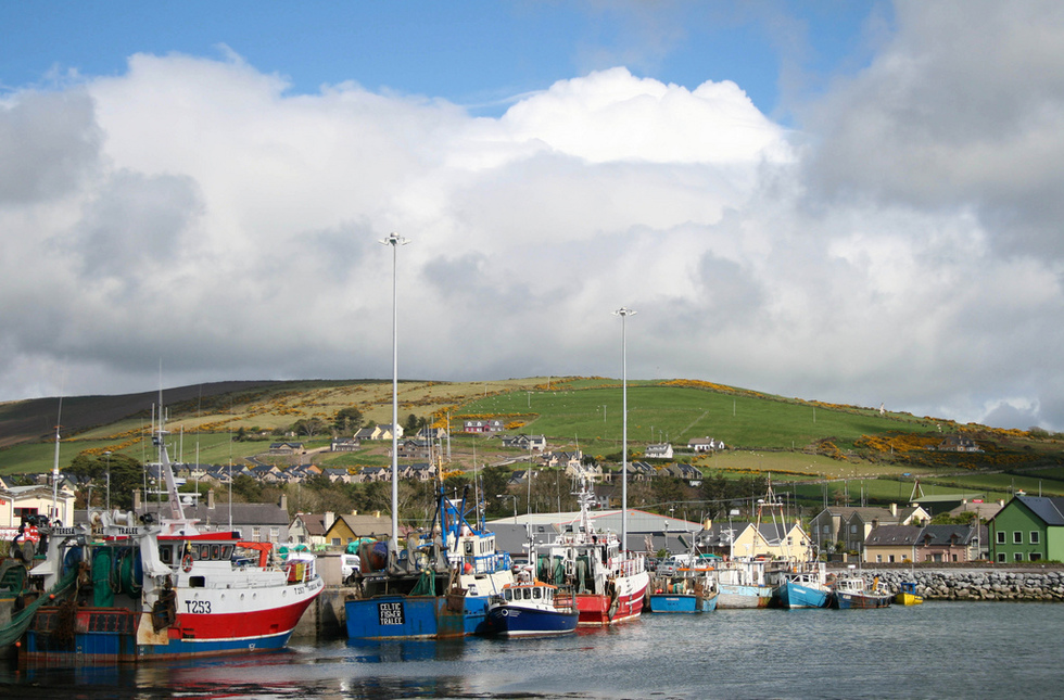 The Harbor of Dingle