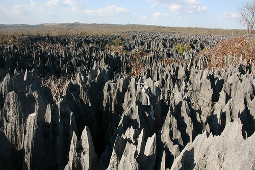 The spiked grey tsingys rise all over the national park