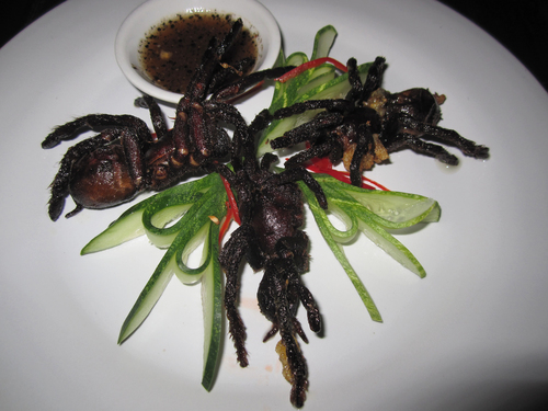 A plate of fried tarantulas