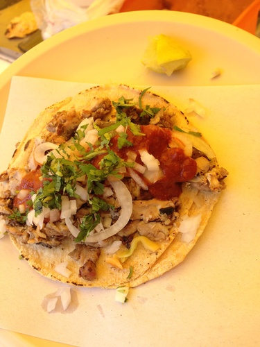 Cow brain taco from Mexico