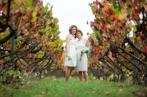 A Napa County vineyard wedding as shot by Napa/Sonoma-based TJ Salsman Photography.