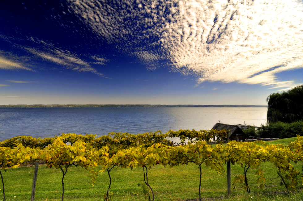 The Finger Lakes Wine Trails