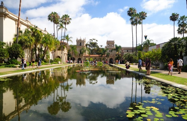 A lily pond at Balboar Park in San Diego