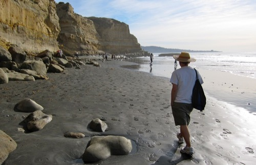 A man walks along the beach at Torrey Pines State Park