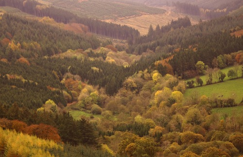 View of the Slieve Bloom mountains in Ireland