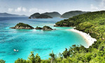 Caribbean_nickelstar-flickr-490x294