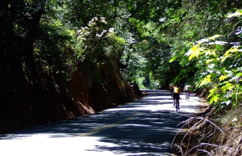 Bicycling in Sonoma County, California