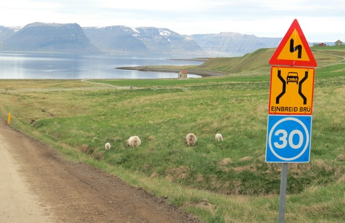 Roads in Iceland do not resemble the expansive, six-lane wide expressways found in the U.S.A. They can be one lane wide in each direction and relatively tight. I found myself driving in the middle of two lanes whenever there were no other cars around, which was often.