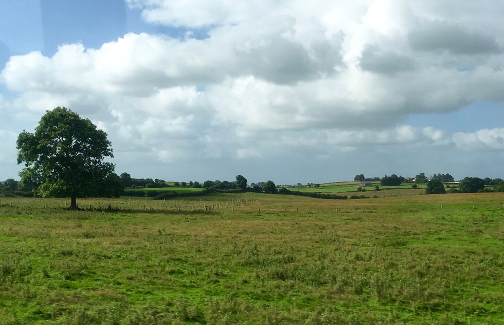 Ireland to Curragh Camp - 6 ways to travel via train, bus, and