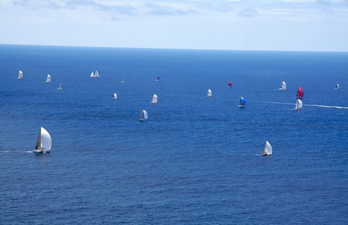 Sixteen sailboats of different sizes and colors in open water near Pigeon Point, Antigua.
