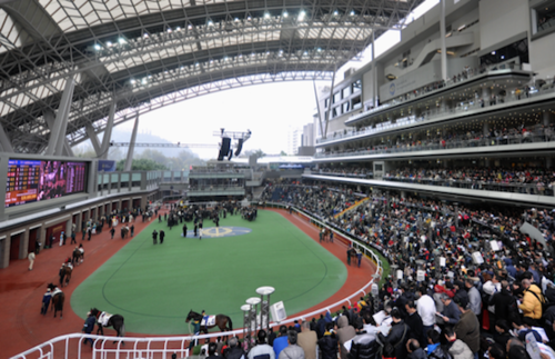 Horse racing, Hong Kong