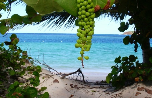 Flamenco Beach On Culebra Puerto Rico