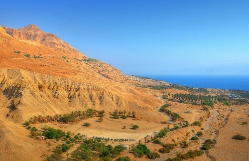 Ein Gedi kibbutz on the western shore of the Dead Sea