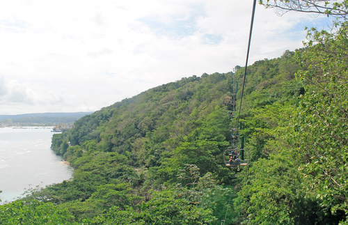 The chairlift takes you above the lush rainforest.