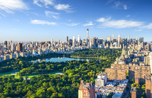 Central Park is a stunning break from New York City's urban landscape.