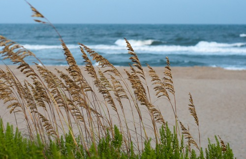 Ocracoke beach on the Cape Hatteras National Seashore in North Carolina