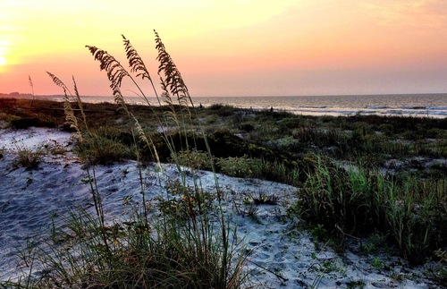 Kiawah Island near Charleston, South Carolina