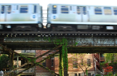 An el train rumbles through a residential neighborhood in Chicago.