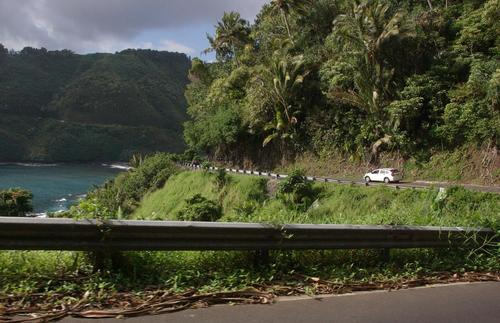 The Hana Highway offers great views of both the ocean and the lush forests.