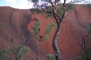 Posts from the Outback: Day 1 of My Northern Territory Adventure in Uluru National Park | Frommer's
