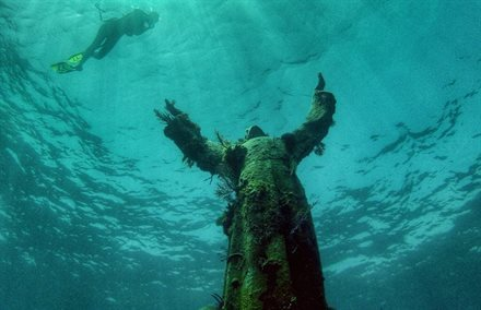 New Virtual Gallery Lets You Explore Underwater Marvels from Dry Land | Frommer's