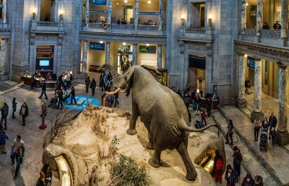 Museums Across the USA Will Be Free on Sept. 21—Here's How to Get Your Tickets | Frommer's