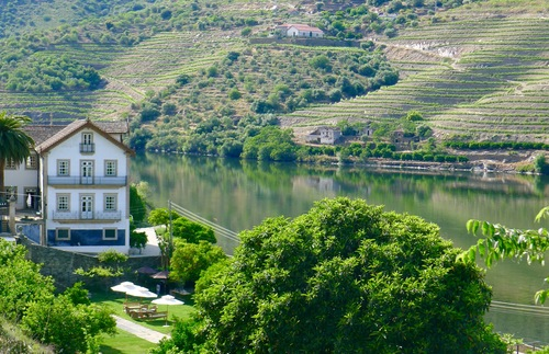 A gourmet train ride into Douro wine country