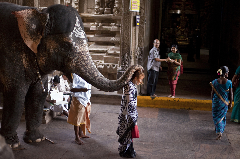 A visitor is blessed by an elephant at the Meenakshi Temple in Madurai, India.