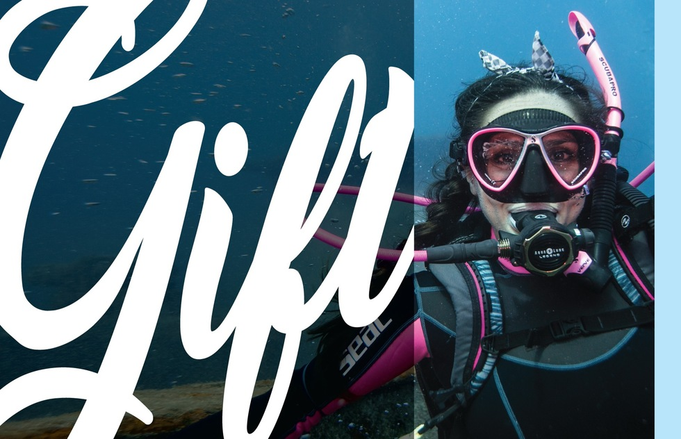 PADI eLearning course, from $179