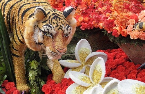Chances to get up close at the Rose Parade