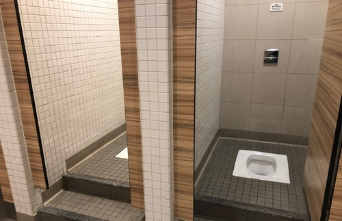 Asian-style toilets