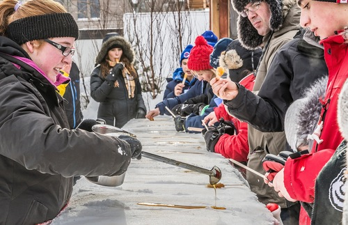 Making maple syrup candy on snow at Quebec City's annual winter carnival