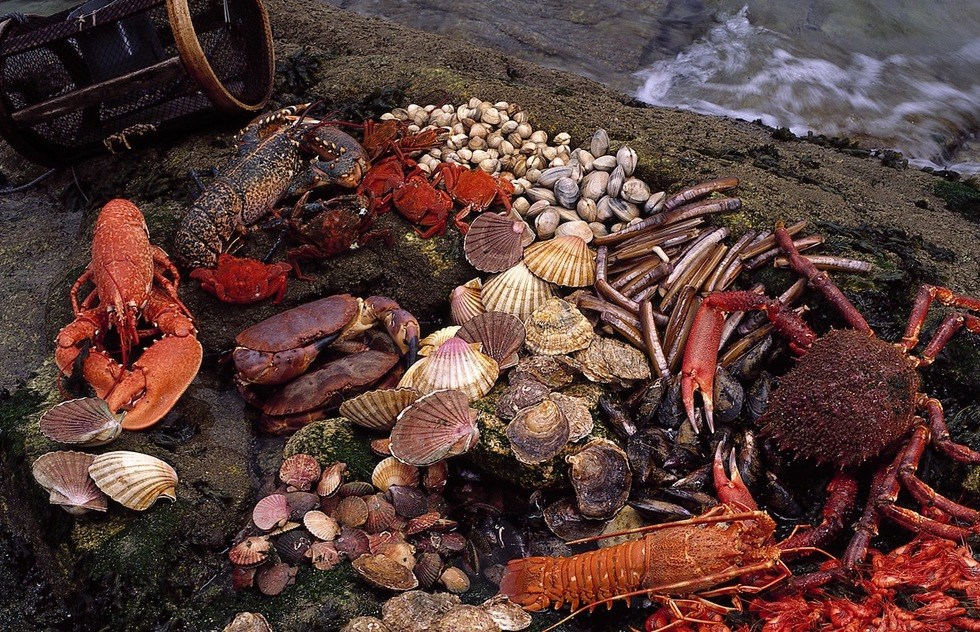 Atlantic cuisine of Galicia, in Northern Portugal and Western Spain