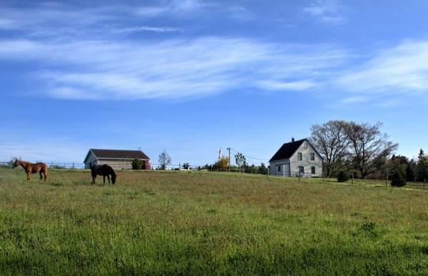 WWOOFing: Explaining a Different Way to Travel, Farm by Farm | Frommer's