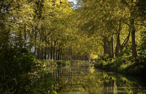 France's Canal du Midi: start in Toulouse