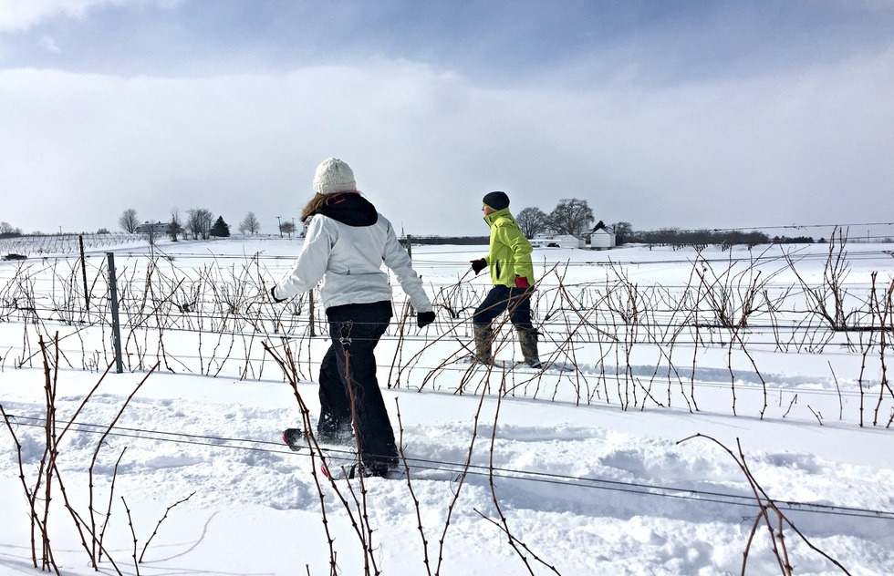 Wine Tasting Tour Experiences: Snowshoeing in Michigan