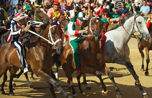Palio di Siena horse race in Italy