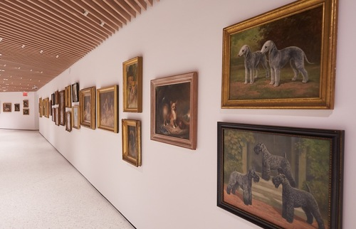 Museum of The Dog Learns New Tricks As It Returns to NYC | Frommer's
