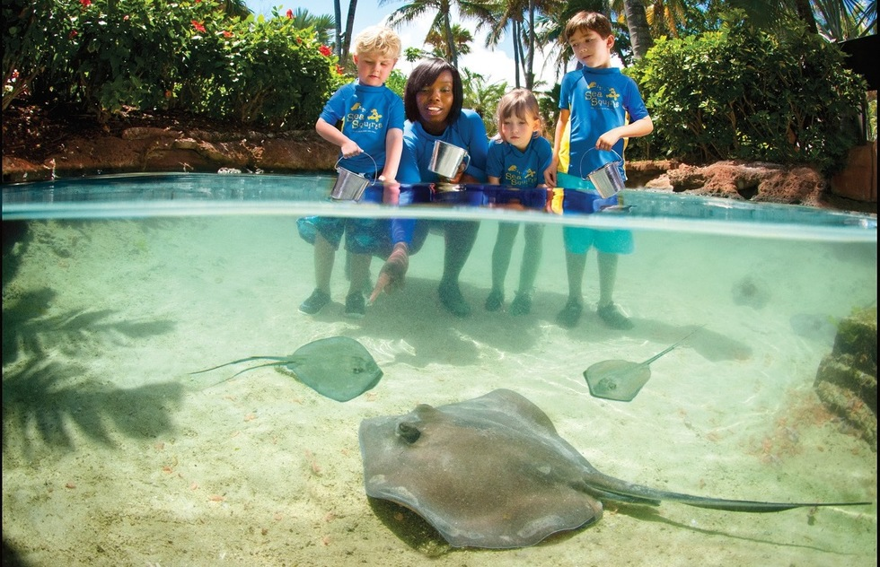 Best resorts for families in the Caribbean and the Bahamas: The Reef, Atlantis Paradise Island, Bahamas