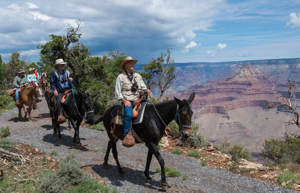 10 Top Grand Canyon Experiences and Tours: Ride a Mule