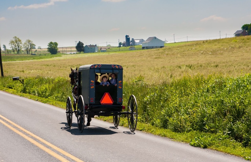 Amish buggy in Lancaster County, Pennsylvania
